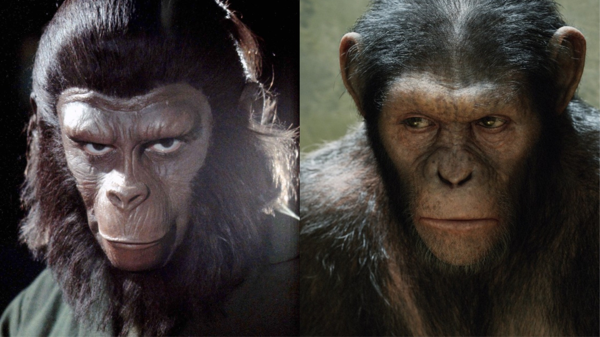 Planet Of The Apes 2019
