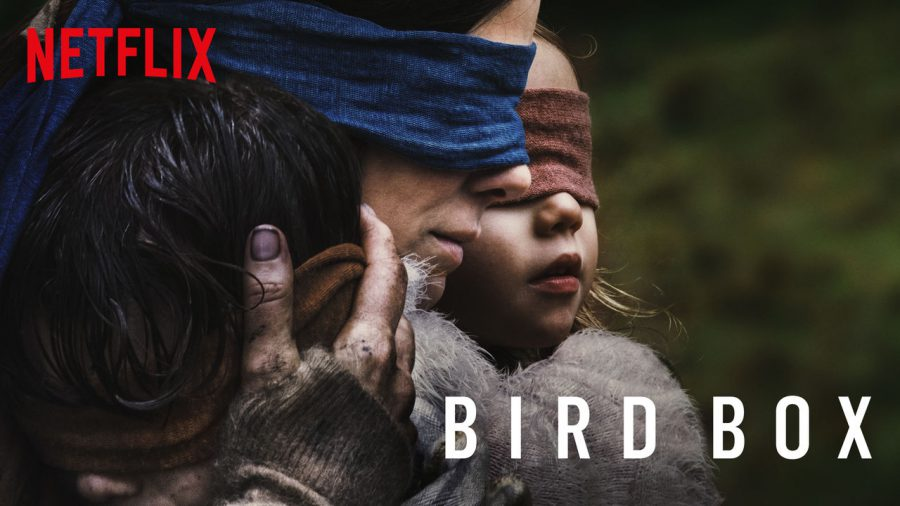 Netflix's 'Bird Box' Breaks Records With 45M+ Viewers In First Week