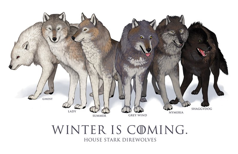 GoT: Does the Wolf Make the Stark?