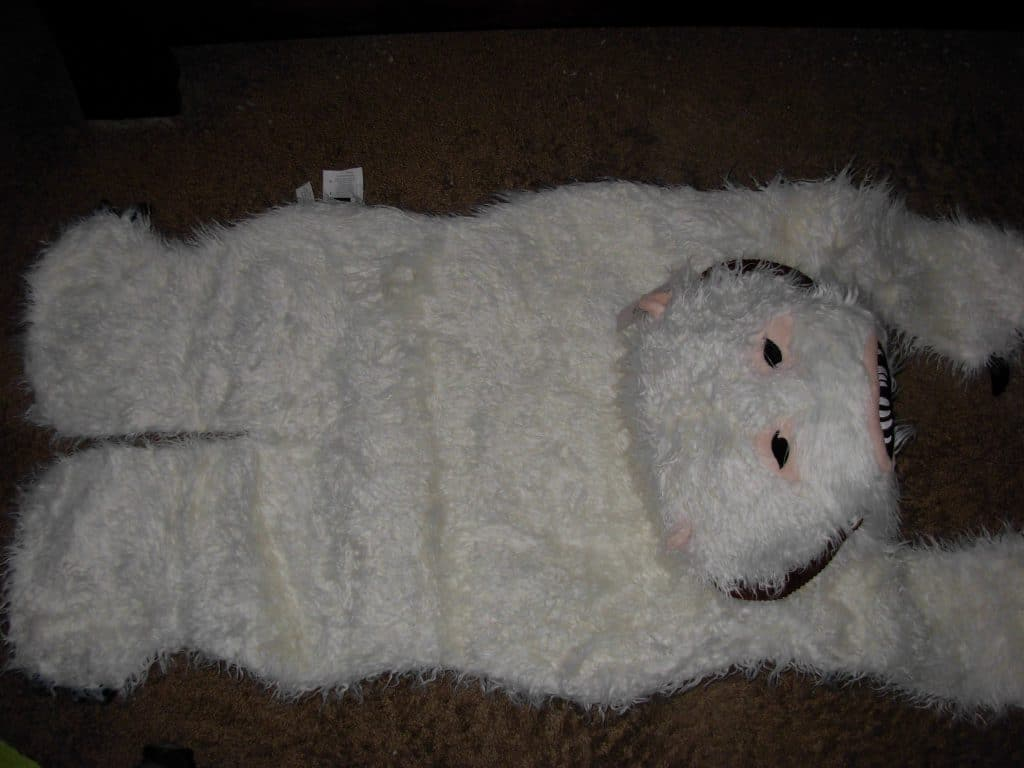 Wampa rug looks up at you.