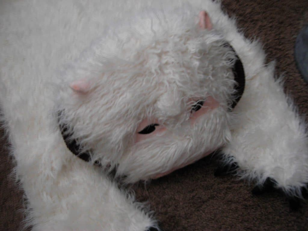 Sad Wampa rug is sad.