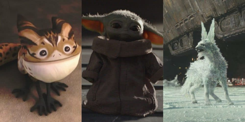 Star Wars: Top 10 Cutest Creatures