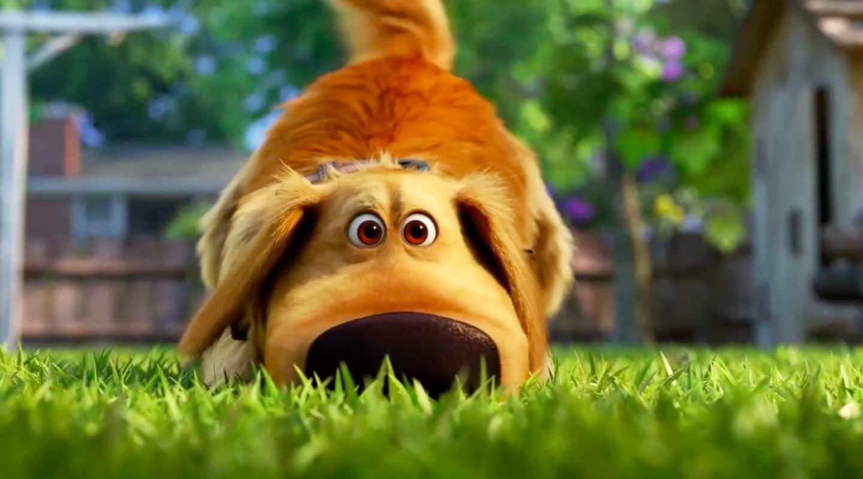 Dug From Pixar's Up ha una serie Disney + [Trailer]